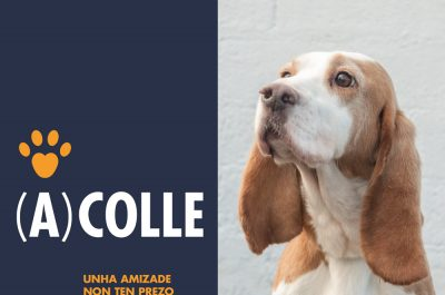 (A)colle