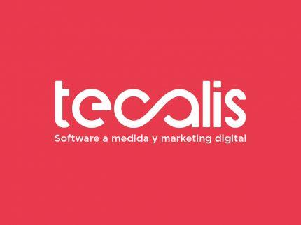 Imaxe corporativa – Tecalis